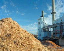 Biomass business plan